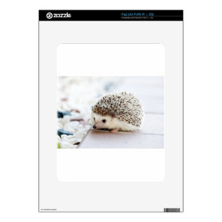 The Cute Baby Hedgehog Skins For iPad