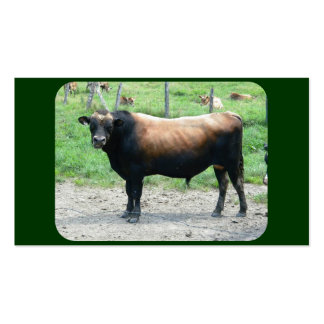 The cutest Bull you ever seen Double-Sided Standard Business Cards (Pack Of 100)