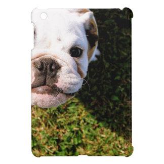 The cutest Bulldog ever!!! iPad Mini Covers