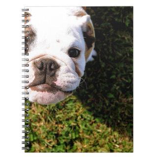 The cutest Bulldog ever!!! Spiral Notebook