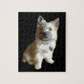 The Cutest Cairn Terrier Ever!  Cuter than Toto! Jigsaw Puzzle