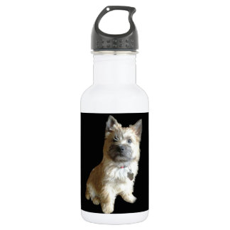 The Cutest Cairn Terrier Ever!  Cuter than Toto! Water Bottle
