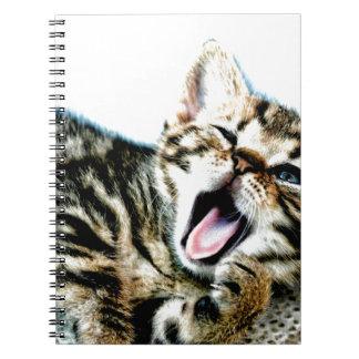 The cutest kitten ever!!! notebook