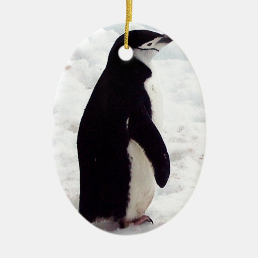 The Cutest Penguin, Ever Double-Sided Oval Ceramic Christmas Ornament