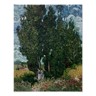 The cypresses, c.1889-90 print