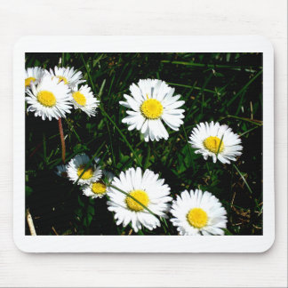 The Daisies Mouse Pad