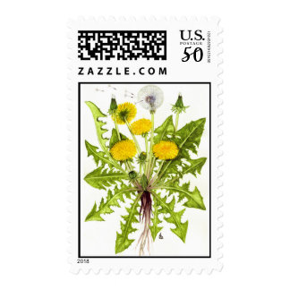 The Dandelion Collection Postage