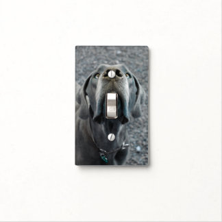 The Dane Nose Light Switch Covers