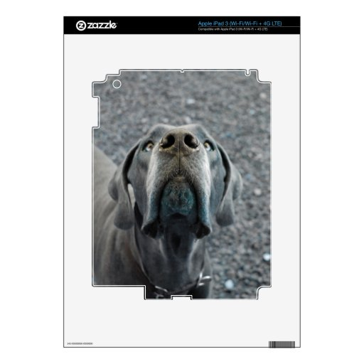 The Dane Nose Skins For iPad 3