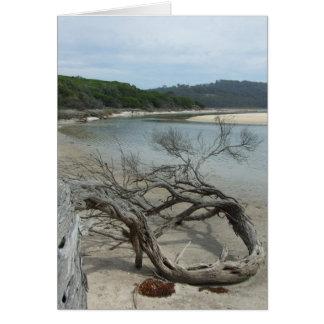 The Daniel Tree Greeting Card