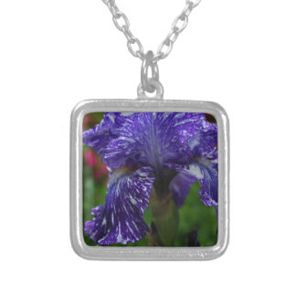 The Daring Heart Silver Plated Necklace