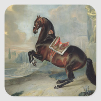 The dark bay horse 'Valido' Square Sticker