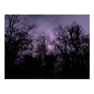The dark forest postcard
