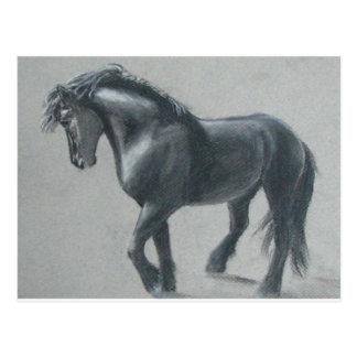 The Dark Horse Postcard