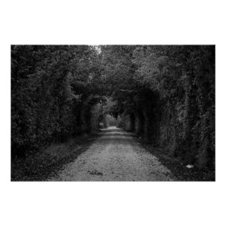 The dark road poster