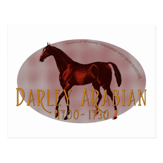 The Darley Arabian Postcard