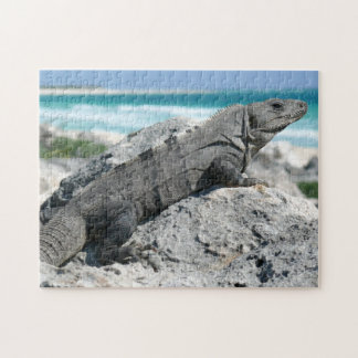 The Day Of The Iguana Puzzle