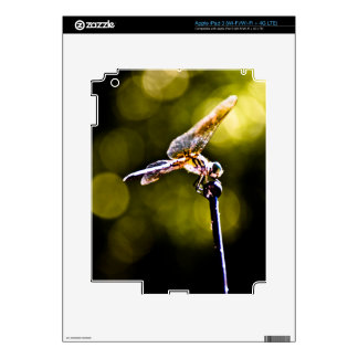 The Dazzling Dragonfly iPad 3 Skins