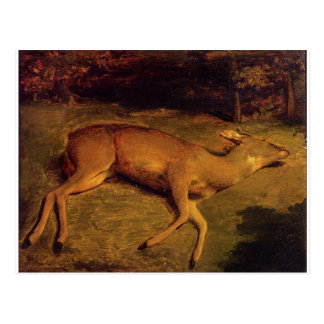 The Dead Doe by Gustave Courbet Postcard