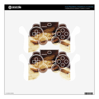 The Dead Sparrow by Franz Marc PS3 Controller Skins