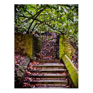 The Deans Steps Postcard