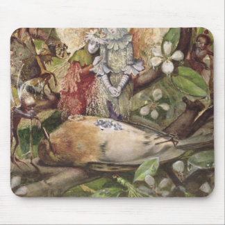 The Death of Cock Robin (w/c on paper) Mouse Pad