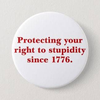 The Declaration of Independence is important Pinback Button
