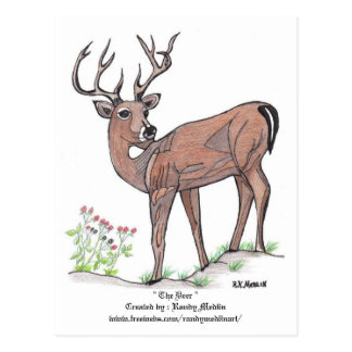 """ The Deer "" Postcard"