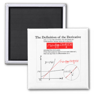 The Definition of the Derivative. 2 Inch Square Magnet