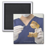 The dentist explained with a dental model 2 inch square magnet