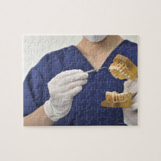 The dentist explained with a dental model jigsaw puzzle