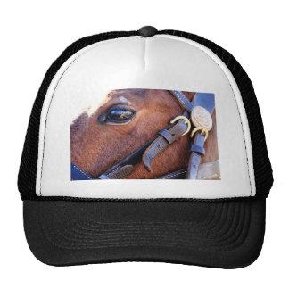 The depth trucker hat