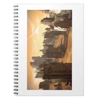 The deserts of TERA Notebook