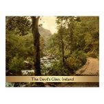 The Devil's Glen, County Wicklow, Ireland Postcard