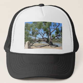 The Dig Tree Trucker Hat