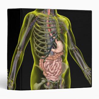 The Digestive System Binder
