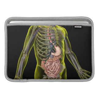 The Digestive System MacBook Air Sleeve