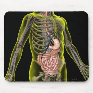 The Digestive System Mouse Pad