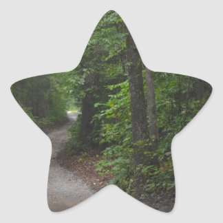 The Dirt Road in summer Star Sticker