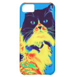 The Distinguished Mr. Humphries iPhone 5C Cover