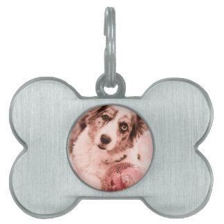 The Diva Pet ID Tags