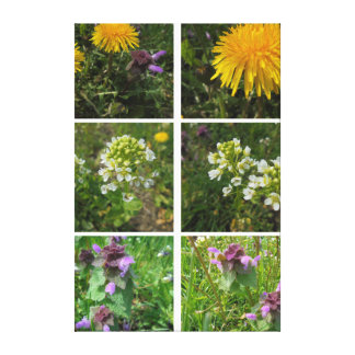 The diversity of flowers canvas print