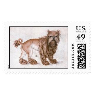 THE DOG / Affenpinscher ,black white Postage Stamp