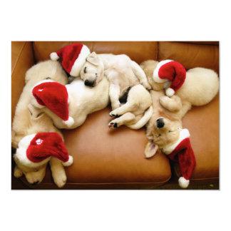 The dog days of Christmas Card
