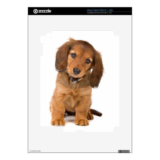 the dog iPad 2 decals
