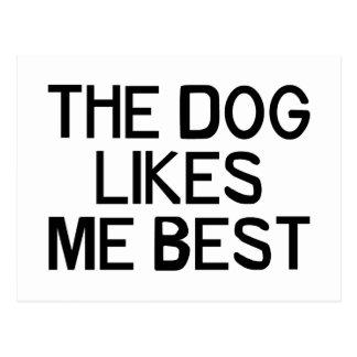 The Dog Likes Me Postcard