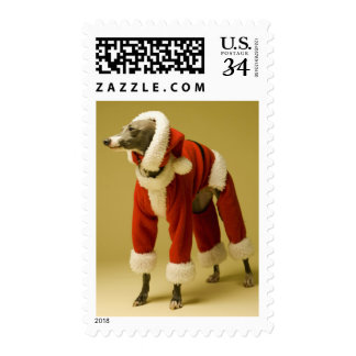 The dog wears Father Christmas's clothes 2 Postage
