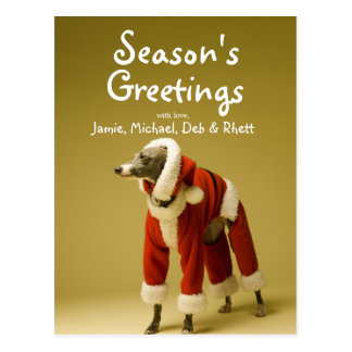 The dog wears Father Christmas's clothes 2 Postcard