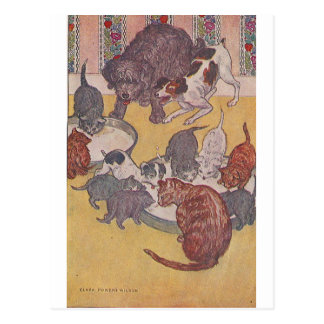 The Dogs and Cats Eat in the House Postcard