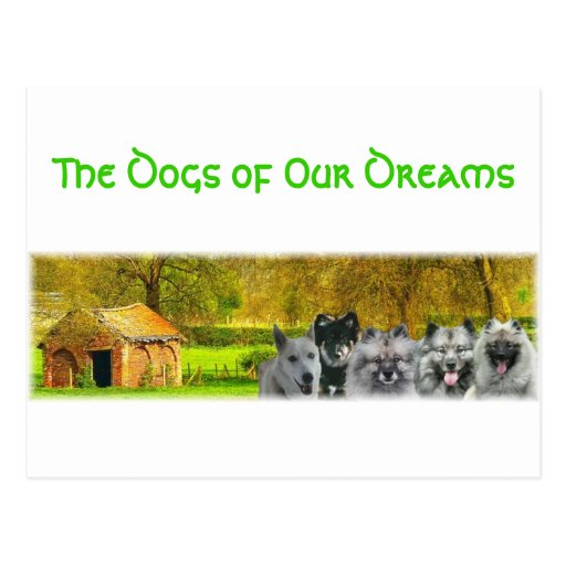 The Dogs of Our Dreams Postcard